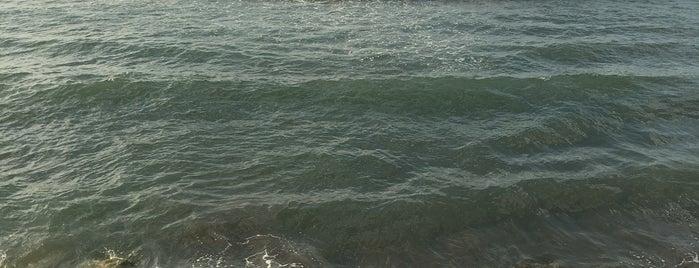 Now Shahr Beach | ساحل نوشهر is one of Lieux qui ont plu à Nora.