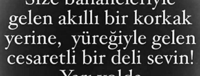 Locais curtidos por Ergün