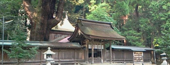 若狭姫神社(若狭彦神社下社) is one of 近江 琵琶湖 若狭.