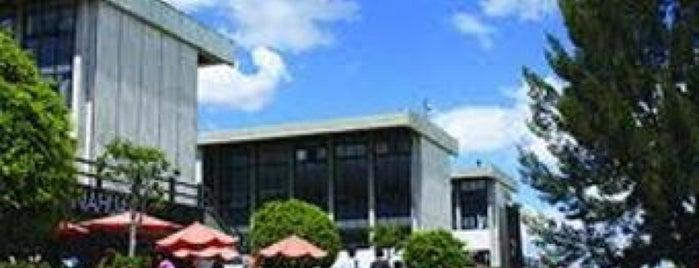 Facultad De Economía y Negocios is one of Orte, die Lily gefallen.