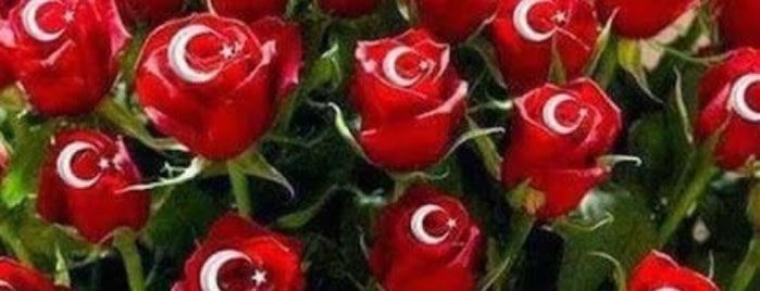 Kahve Aşkına is one of Orte, die Melike gefallen.