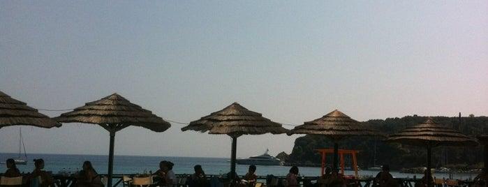 Beach Bar Tango is one of Dimitris 님이 좋아한 장소.