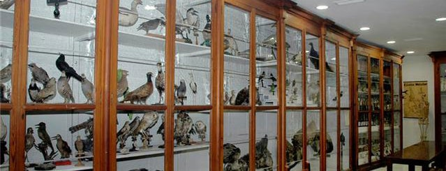 Museo Aguilar y Eslava is one of Que visitar en Cabra.