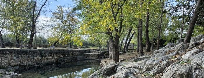 Fuente de Las Piedras is one of Actividades de Ocio en Cabra.