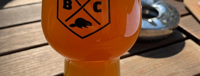 Beaver Brewing Company is one of Vienna.