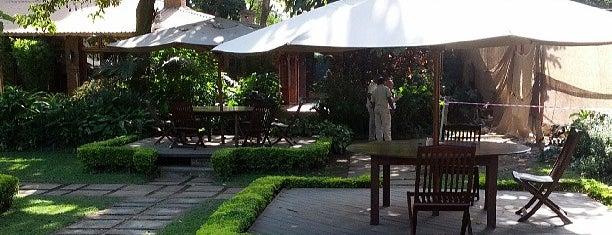 Arusha Coffee Lodge is one of M's ever-growing list of random stuff.