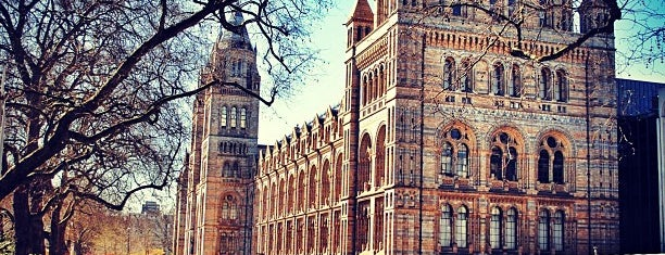 Natural History Museum is one of Left In London.