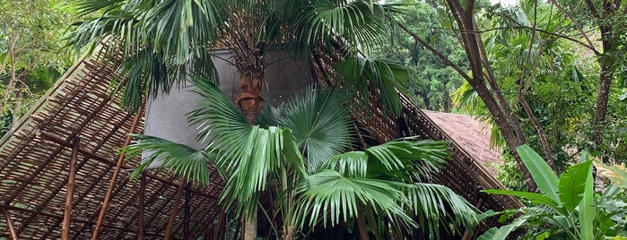 Three Monkeys Restaurant is one of 2020 August. Phuket.