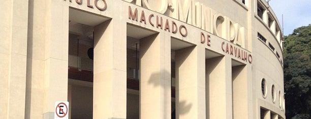 Estádio Municipal Paulo Machado de Carvalho (Pacaembu) is one of Sao Paulo Tour.