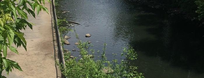 River Park is one of Denis'in Kaydettiği Mekanlar.