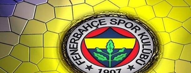 Şükrü Saraçoğlu Stadı is one of istanbul.