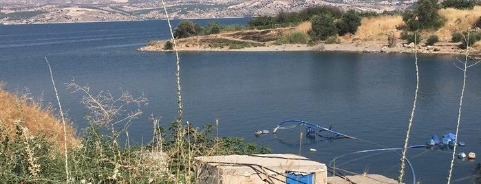 Birecik Barajı is one of Tempat yang Disukai Ali.