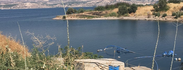 Birecik Barajı is one of สถานที่ที่ Ali ถูกใจ.