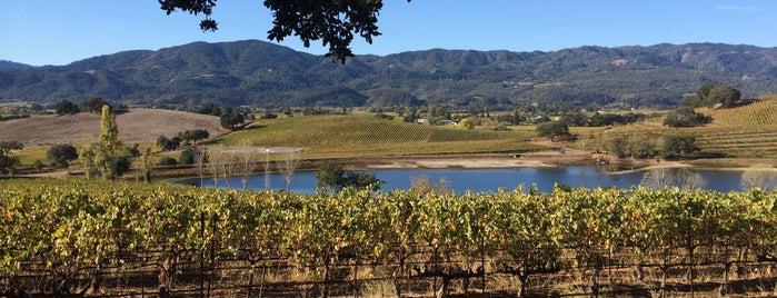 Quintessa is one of Lugares favoritos de Napa.