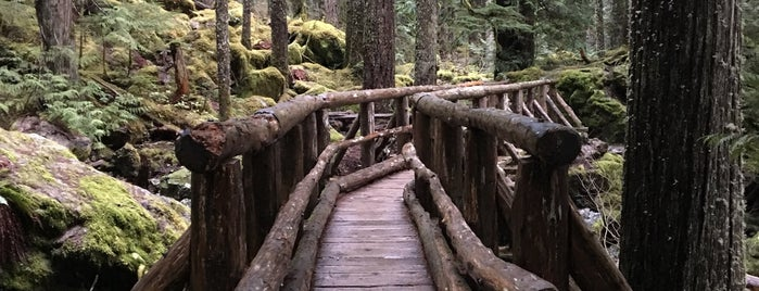 Lena Lake is one of Camping/Hiking in Western Washington.