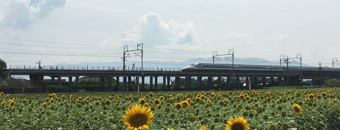 東海道新幹線 揖斐川橋梁 is one of 撮り鉄スポット.
