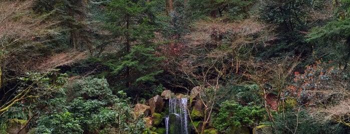 Portland Japanese Garden is one of Portlandeau.