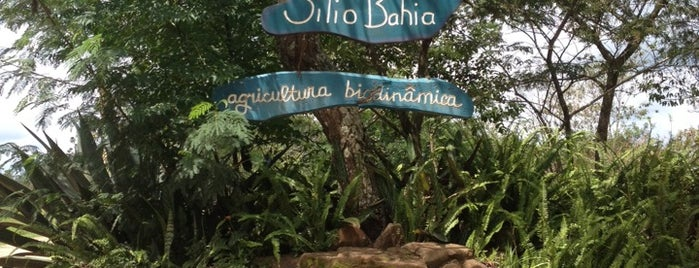 Sitio Bahia - Bio Loja is one of Lieux qui ont plu à Valéria.