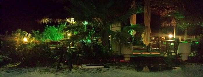 Green Sea Restaurant is one of Locais curtidos por Selin.