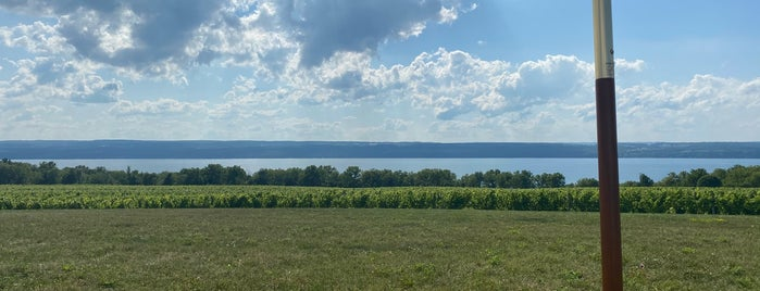 Boundary Breaks Vineyard is one of Finger Lakes Wine Trail & Some.