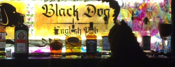 Black Dog English Pub is one of Orte, die Gunther gefallen.