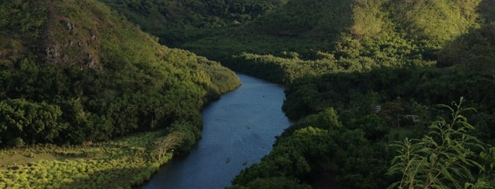 Wailua River is one of Lugares favoritos de Bob.