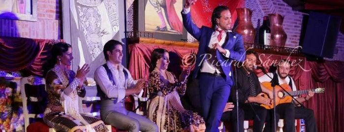 Tablao Flamenco Los Porches is one of Madrid.