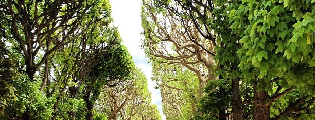 Jardin des Plantes is one of Paris: husband's hometown ♥.