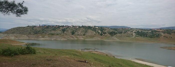 Vezirköprü Kamp Alanı is one of สถานที่ที่ Elif ถูกใจ.