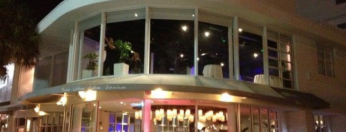 Yuca Restaurant is one of Endo's Foodie Heaven.