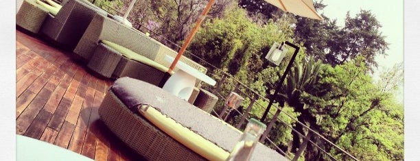 Terraza Condesa DF is one of Editor's Choice.