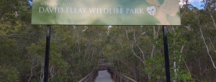 David Fleay Wildlife Park is one of [todo] Gold Coast.