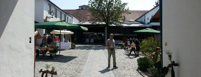 Weingut Jurtschitsch is one of Wachau.