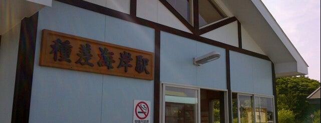 種差海岸駅 is one of JR 키타토호쿠지방역 (JR 北東北地方の駅).