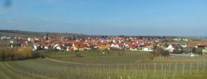 Kallstadt is one of Adelino 님이 좋아한 장소.