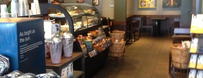 Starbucks is one of Posti che sono piaciuti a Mirko.