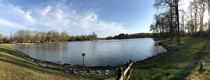 Lynwood Lake is one of Daniel : понравившиеся места.