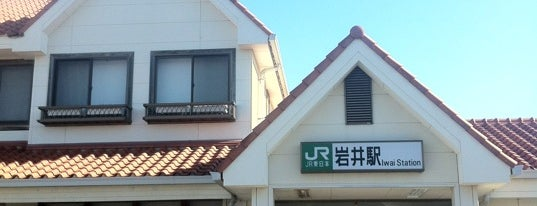 Iwai Station is one of JR 키타칸토지방역 (JR 北関東地方の駅).