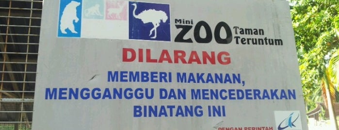 Mini Zoo Taman Teruntum is one of Attraction Places to Visit.