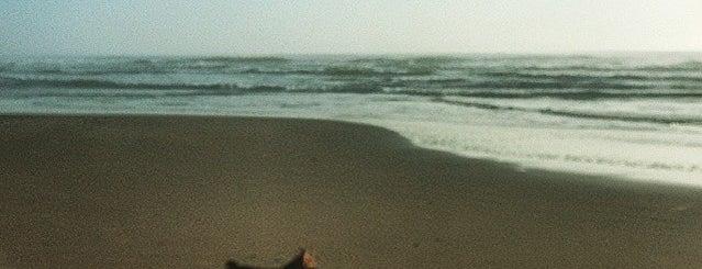 Playa La Aguada is one of Uruguai.