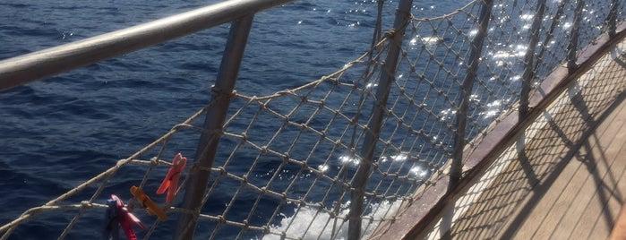 Tekne Bermuda is one of Kaş & Kalkan.