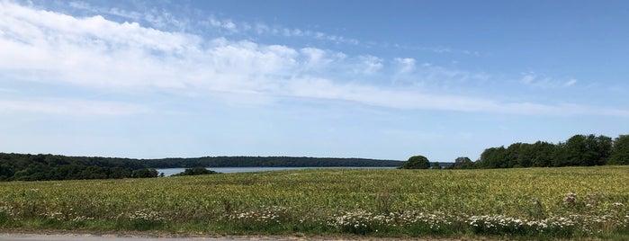 Furesøen is one of Denmark 🇩🇰.