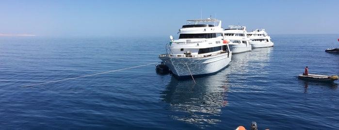 SS Thistlegorm British Shipwreck is one of Sharm.