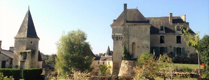 Chateau de La Celle-Guenand is one of Posti che sono piaciuti a Michael.