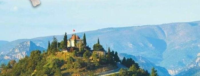 Şerifpaşa Camii is one of Bilecik.