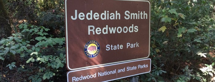 Jedediah Smith Redwoods State Park is one of Been There, Done That.