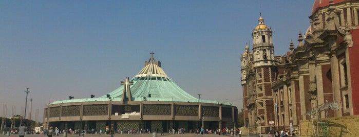 Basílica de Santa María de Guadalupe is one of Arriba Mexico.