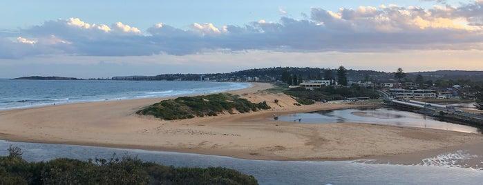 North Narrabeen Beach is one of สถานที่ที่ Tamara ถูกใจ.