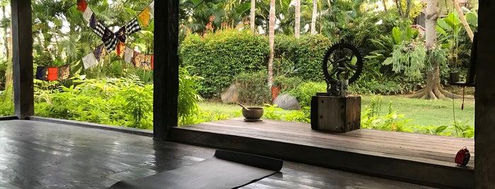 Desa Seni Yoga Studio is one of Spa & Sports.