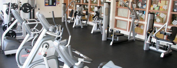 Harris Park is one of Chicago Park District Fitness Centers.